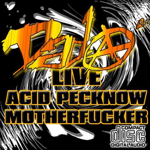 Acid Pecknoww Motherfucker (Live Acidtechno 2012)