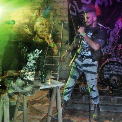 Boeuf Punk le Vivier Bretagne 2015